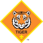 TIGER logo color.jpg