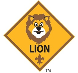 lionprogrampatch